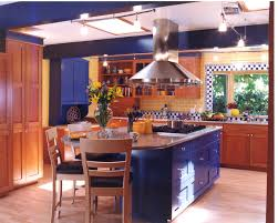 blue kitchens delectable yellow and blue kitchen best 25 blue yellow kitchens