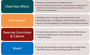 Cabinet Responsibilities Erm Governance Office Of The Chief Risk Officer