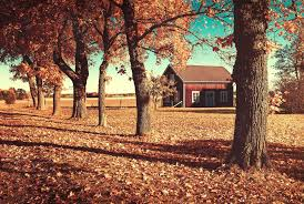 leaves house autumn trees orange nature wallpapers hd