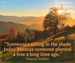 inspirational quotes about trees onetreeplanted