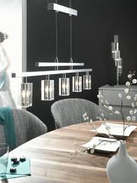 Dining Room Lights Uk 29 Best Rise And Fall Lights Images On Pinterest Fall Lights
