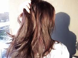 light mountain natural hair color black light mountain natural hair color black best natural hair 2018