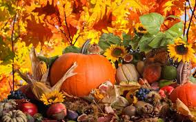 pumpkin screensaver top 25 thanksgiving day wallpapers hd wallpapers collection