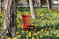 Cape Cod In April - the red chair at sandy neck beach highpointebnb red chair