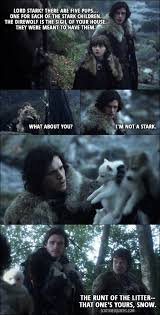 there are five pups one for each of the stark children