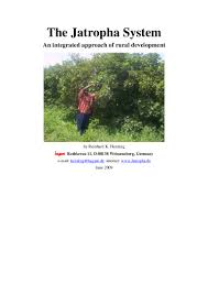 jatropha wikipedia the jatropha system an integrated approach of rural development