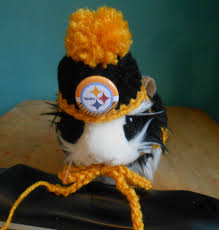 steelers halloween guinea pig pittsburgh sweater and steelers hat guinea pig