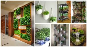 15 glorious indoor garden that you could easily grow in your home