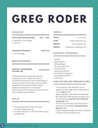 Sample Resume Format With Achievements by Best Cv Examples 2017 To Try Resume Examples 2017