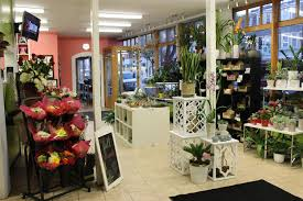 Flower Shop Interior Pictures South Boston Flower Shop Boston Florist Stapleton Floral Design