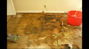 Replacing Carpet With Laminate Flooring Replacing Water Damaged Particle Board Floors With Laminate