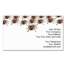 stink or shield bug for pest exterminator sided standard