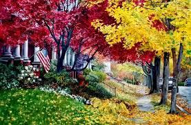 misc walk street autumn flag road stair building car tree path