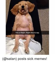 Sick Puppy Meme - this is ralph ralph likes to nap posts sick memes funny meme on