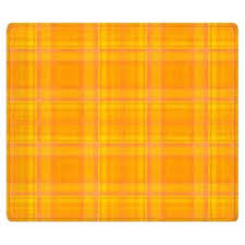 Plaid Area Rug Catchy Plaid Area Rug Plaid Rug Roselawnlutheran Envialette