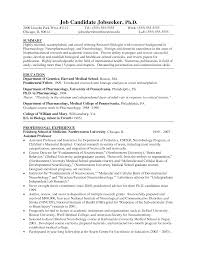 Good Summary Of Qualifications For Resume Examples by Combination Resume Example Professor Real Estate Law P1 Examples
