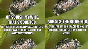 Spider Bro Meme - just saw this spiderbro meme is this a thing imgur