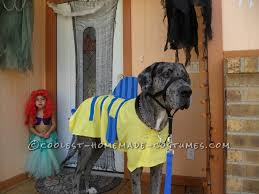 Dog Halloween Costumes Adults Homemade Flounder Costume Dog Flounder Costume Costumes