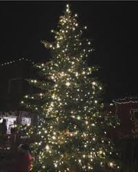 The Grinch Christmas Lights Santa Arrival And Tree Lighting Country Village Shops Bothell
