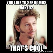 Naked Meme - you like to see homos naked that s cool joe dirt meme generator