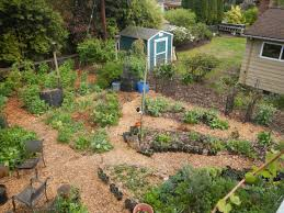 online permaculture design course permaculture rising home