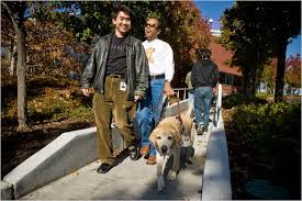 How Does A Guide Dog Help A Blind Person For The Blind Technology Does What A Guide Dog Can U0027t The New