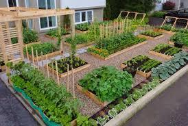 Simple Backyard Vegetable Garden - Backyard vegetable garden designs
