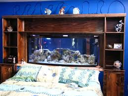 Decorative Water Tanks Best 25 Fish Tank Sizes Ideas On Pinterest Unique Fish Tanks