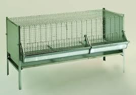 gabbia per pulcini gabbie per pollicoltura venturi