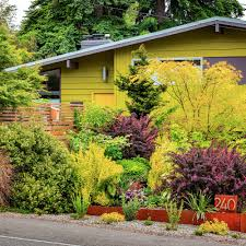 design a vibrantly colorful garden sunset