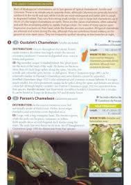 native plants of madagascar wildlife of madagascar ken behrens keith barnes nhbs book shop