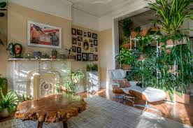 home interior plants indoor plants for home greenery nyc