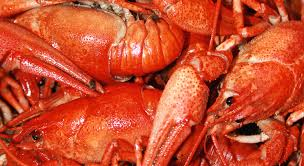 boomtown lobster buffet reno casino hotel resort