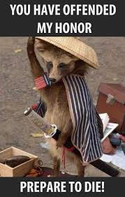 Funny Raccoon Meme - raccoon samurais