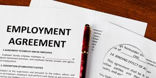 Resume Experts Resume Writers Perth What Difference Does A Professional Resume