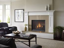 Living Rooms With Wood Burning Stoves Duluth Stove U0026 Fireplace Duluth Mn U0026 Superior Wi Fireplaces