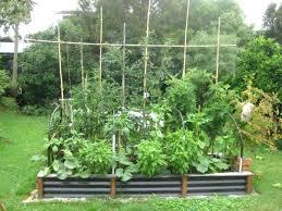 Herb Garden Idea Garden Designing For Beginners Elcorazon Club