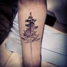 12 best tree tattoos com tattoos