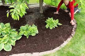 lawn edging ideas dirt cheap kitchener waterloo hamilton guelph