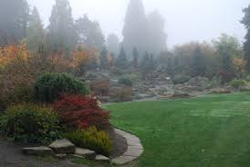 Rock Garden Seattle The Intercontinental Gardener Bellevue Botanical Garden
