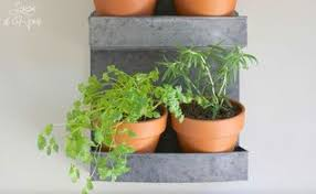 make a hanging indoor garden hometalk