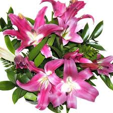 Lily Bouquet Pink Lily Bouquet Eastridge Flowers Best Florist In Auckland
