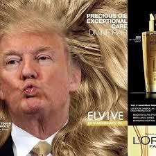 Nice Hair Meme - nice hair trump xd l o l pinterest