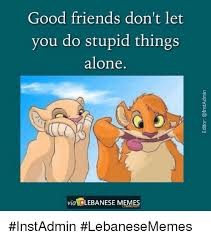 Good Friends Meme - good friends don t let you do stupid things alone via lebanese