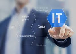 differences between it consulting it services and software consulting