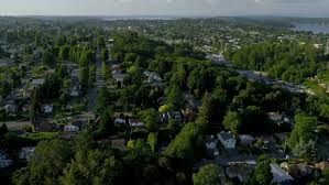 Washington vegetaion images Aerial view of residential homes and suburbs in green environment jpg