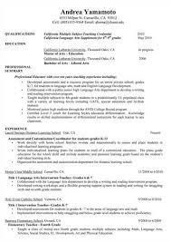 Profile In Resume Professional Profile On U003ca Href U003d