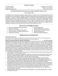 minimalist resume template indesign album layout img models worldwide 11 best cool resumes proposals images on pinterest resume