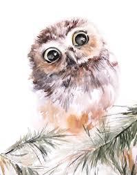 237 best owl art images on pinterest owl art barn owls and