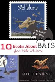 children u0027s books about bats enjoy the learning journey